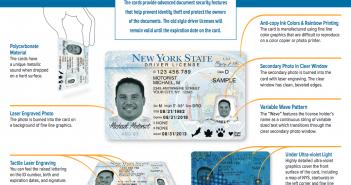 New IDs